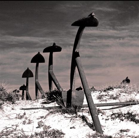anchor cemetery tavira algarve