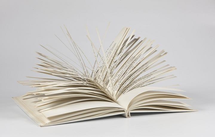 Tarifas Infinitas, Cent mille milliards de poèmes de Raymond Queneau,