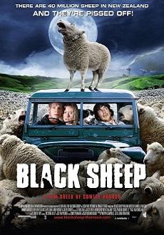Black Sheep, Jonathan King, Phantasticus Festival