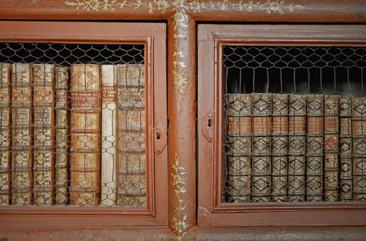 Biblioteca Joanina - Books