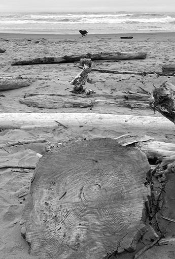 reis azoren en madeira