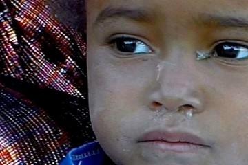 Tuaregue Retratos dos Homens Azuis, José Manuel de S. Lopes, cine eco 2014 seia,