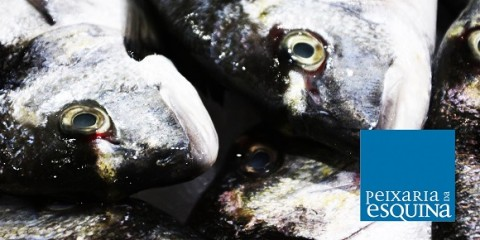 Peixaria da Esquina Vitor Sobral lisbon portugal