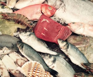 conrad algarve dad seafood fresh fish restaurant