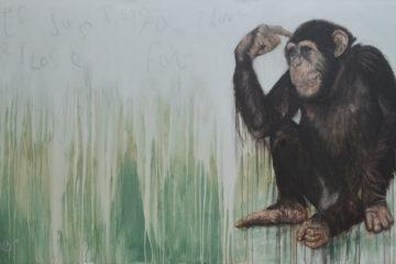 Christian Palmer chimpanzee artcatto conrad algarve